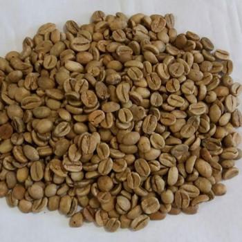 خرید قهوه عمده بالی